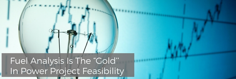 "Fuel Analysis Is The ""Gold'' In Power Project Feasibility"